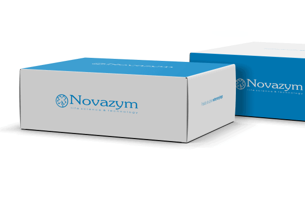 Nova Taq DNA polymerase